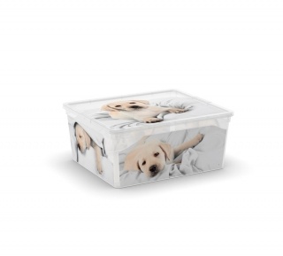 KIS C box Puppy and Kitten - M