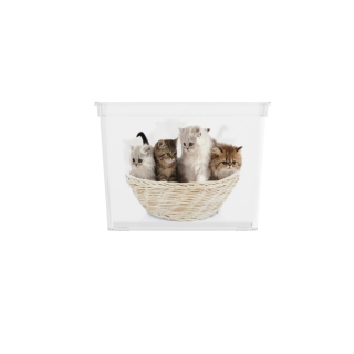 KIS C box Puppy and Kitten - CUBE 84191-2055
